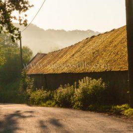 Old Dairy – Salehurst