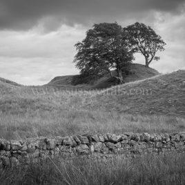 King Arthur's Well, Northumberland