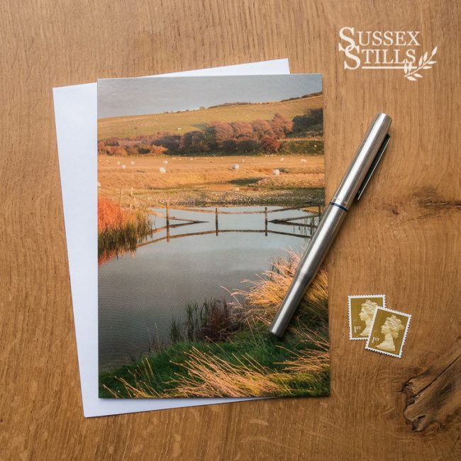 Autumn Colours Of The Cuckmere Haven, greeting card by Nicky Flint