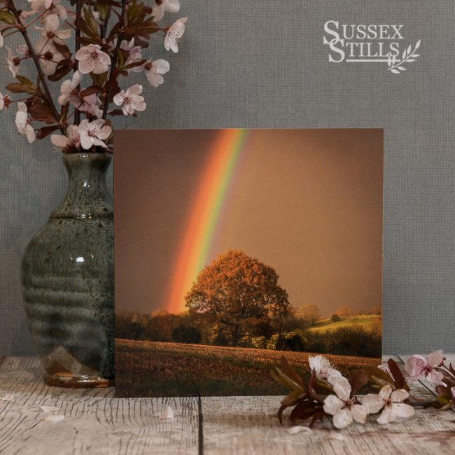 The Rainbow's End, greeting card by Nicky Flint
