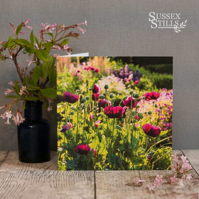 Poppies In The Orchard Garden At Great Dixter, greeting card by Nicky Flint