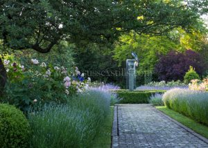 The Rose Garden greeting card by Nicky Flint 3